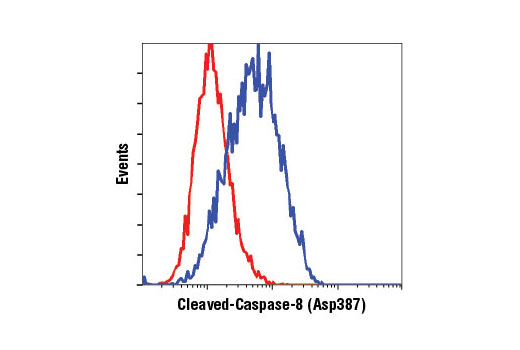 Flow Cytometry Image 1: Cleaved Caspase-8 (Asp387) (D5B2) XP® Rabbit mAb (Mouse Specific)