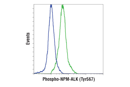 Flow Cytometry Image 1: Phospho-ALK (Tyr1507) (D6F1V) Rabbit mAb